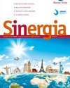 sinergia_dic_2012_small